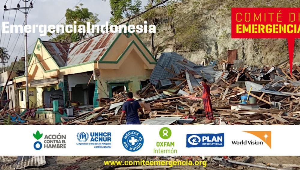 Comité de Emergencia para canalizar la solidaridad ante el terremoto y el tsunami en Indonesia
